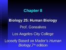 Lecture Biology 25 (Human Biology): Chapter 8 - Prof. Gonsalves