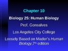 Lecture Biology 25 (Human Biology): Chapter 10 - Prof. Gonsalves