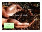 Bài giảng Phần 7: Duy trì độ phì đất