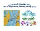 Bài thuyết trình Ảnh hưởng Raman kích thích đến sự truyền thông tin trong sợi cáp quang