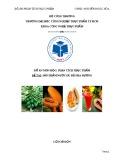 Đồ án môn học Phân tích thực phẩm: Sản phẩm nước Đu đủ pha đường