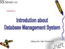 Bài giảng Hệ cơ sở dữ liệu - Chương 1: Giới thiệu về cơ sở dữ liệu