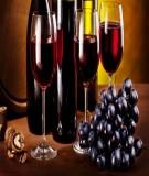Báo cáo tiểu luận: Quy trình sản xuất rượu vang Nho