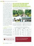 Một số giải pháp tăng trưởng nguồn vốn tín dụng cho phát triển nông nghiệp nông thôn Việt Nam trong giai đoạn hiện nay