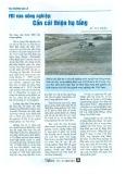 FDI vào nông nghiệp: Cần cải thiện hạ tầng