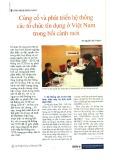 Củng cố và phát triển hệ thống các tổ chức tín dụng ở Việt Nam trong bối cảnh mới
