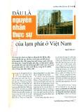 Đâu là nguyên nhân thực sự của lạm phát ở Việt Nam