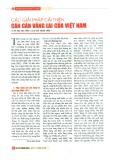 Các giải pháp cải thiện cán cân vãng lai của Việt Nam