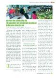 Giải pháp tăng cường lượng vốn tín dụng chính thức cho sản xuất của nông hộ ở đồng bằng Sông Cửu Long