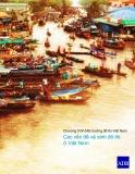 Báo cáo tóm tắt Chương trình Môi trường đô thị Việt Nam: Các vấn đề vệ sinh đô thị ở Việt Nam