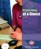 Ebook Prescribing at a glance: Part 1