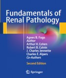 Ebook Fundamentals of renal pathology (2nd edition): Part 2