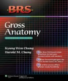 Ebook BRS Gross anatomy (7th edition): Part 2