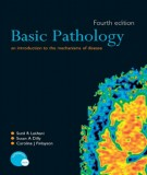 Ebook Basic pathology (4th edition): Part 1