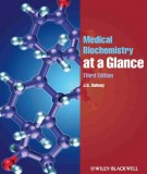 Ebook Medical biochemistry at a glance (3rd edition): Part 1