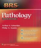 Ebook BRS pathology (5th edition): Part 1