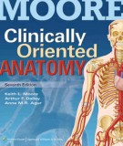 Ebook Moore - Clinically oriented anatomy (7th edition): Part 1