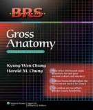 Ebook BRS Gross anatomy (7th edition): Part 1