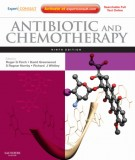 Ebook Antibiotic and chemotherapy expert consult (9th edition): Part 1