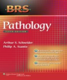 Ebook BRS pathology (5th edition): Part 2