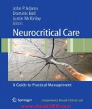 Ebook Neurocritical care - A guide to practical management: Part 1