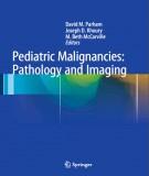 Ebook Pediatric malignancies pathology and imaging: Part 2