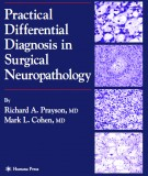 Ebook Practical differential diagnosis in surgical neuropathology: Part 1