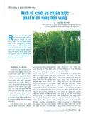Kinh tế xanh và chiến lược phát triển rừng bền vững
