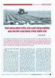 Giải pháp phát triển sản xuất nông nghiệp quy mô lớn ứng dụng công nghệ cao