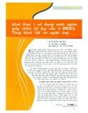 Khai thác - Sử dụng nước ngầm gây nhiều hệ lụy xấu ở ĐBSCL tăng bệnh tật và ngập úng