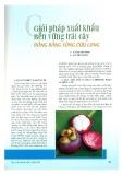 Giải pháp xuất khẩu bền vững trái cây đồng bằng Sông Cửu Long