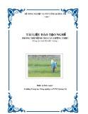 Tài liệu đào tạo nghề Phòng trừ bệnh cho cây lương thực - Trường TH NN&PTNT Quảng Trị