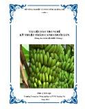 Tài liệu đào tạo nghề Kỹ thuật thâm canh chuối lùn - Trường TH NN&PTNT Quảng Trị