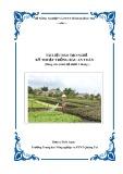 Tài liệu đào tạo nghề Kỹ thuật trồng rau an toàn - Trường TH NN&PTNT Quảng Trị
