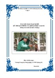 Tài liệu đào tạo nghề Kỹ thuật trồng và khai thác cao su - Trường TH NN&PTNT Quảng Trị