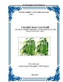 Tài liệu đào tạo nghề Kỹ thuật trồng, chăm sóc và thu hoạch cây tiêu - Trường TH NN&PTNT Quảng Trị