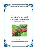 Tài liệu đào tạo nghề Kỹ thuật trồng và chăm sóc cà phê - Trường TH NN&PTNT Quảng Trị
