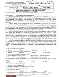 Đề thi cuối học kì môn Anh Văn NNA104 - Trường Đại học Quốc gia TP. HCM (Mã đề 685)