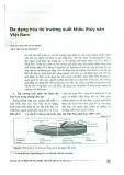 Đa dạng hóa thị trường xuất khẩu thủy sản Việt Nam