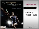 Lecture Project management: The managerial process (5/e): Chapter 11 - Erik W. Larson, Clifford F. Gray
