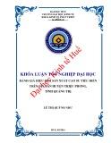Khóa luận tốt nghiệp: Đánh giá hiệu quả sản xuất cao su tiểu điền trên địa bàn huyện Triệu Phong