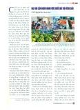 Vai trò của ngân hàng đối với chuỗi giá trị nông sản