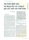 Mô hình định mức tín dụng cho các công ty phi sản xuất của Việt Nam