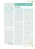 Xử lý nợ xấu theo mô hình công ty quản lý tài sản: Từ kinh nghiệm quốc tế tới thực tiễn Việt Nam