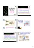 Bài giảng Một số thuật ngữ thường gặp trong sinh học phân tử