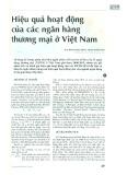 Hiệu quả hoạt động của các ngân hàng thương mại ở Việt Nam