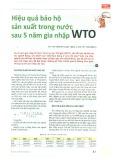 Hiệu quả bảo hộ sản xuất trong nước sau 5 năm gia nhập WTO