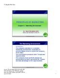 Principles of marketing: Chapter 2 – Marketing environment