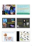 Bài giảng Sinh học phân tử: Chương 1 - Mở đầu - Lược sử ra đời của SHPT - Sự chuyển vật liệu di truyền ở vi khuẩn