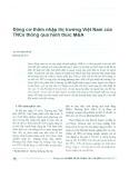 Động cơ thâm nhập thị trường Việt Nam của TNCs thông qua hình thức M&A